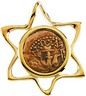 Star Slide Pendant with Widows Mite Coin 26.5 x 23mm Ref 274988
