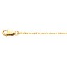 .75mm Lasered Titan Gold  Rope Chain Ref 310268